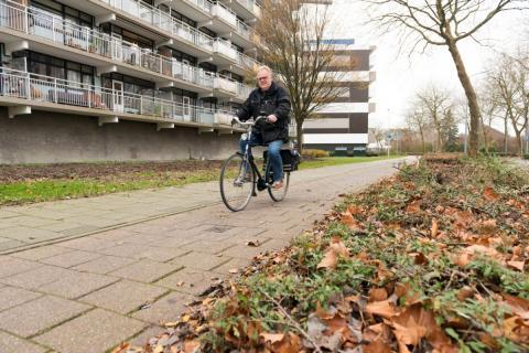 fietspad aan de Kalslagerring (foto: Margo Oosterveen)