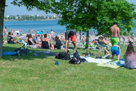 Een zomerse dag in recreatiegebied aan Toolenburgerplas (foto: Margo Oosterveen)